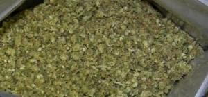 Bediol: varietà di cannabis legale in Italia per uso medico terapeutico, preparata dal Farmacista