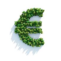 Prezzo della Cannabis in Italia: l'inganno del grammo