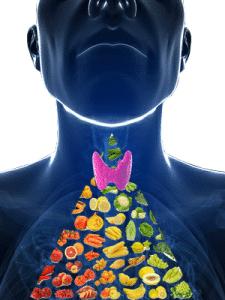 Grazie al Farmacista è possibile preparare farmaci a base di tiroide secca a dose personalizzata