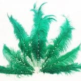 cannabis light canapa legale in farmacia galenica