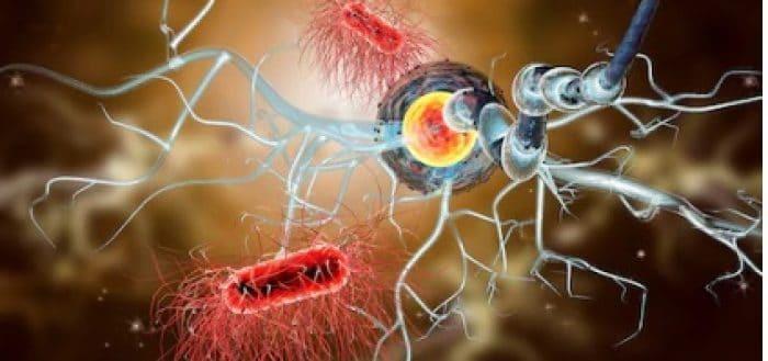 clemastina sclerosi multipla farmaco tevegil galenico
