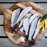alimentazione e pelle grassa pesce sebo