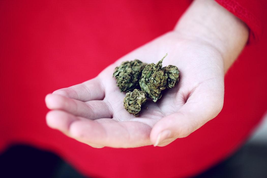 situazione cannabis terapeutica in italia farmacia