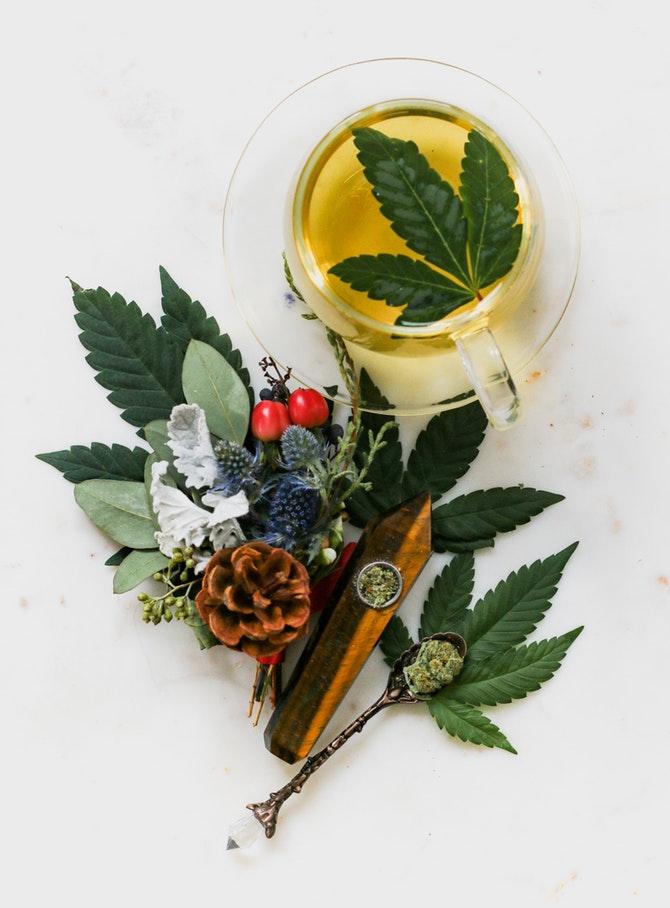 estratti cannabis nei cosmetici